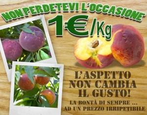 Offerta frutta